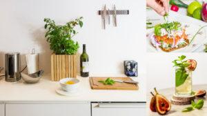 Zelf kruiden kweken in de keuken: Kruidenplanten op het aanrecht – Squarely, Andrew Wong en Monstruo Estudio, Unsplash.com