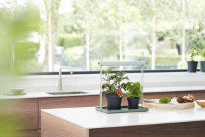 Zelf kruiden kweken in de keuken: plant lamp: Elho LED kweeklamp